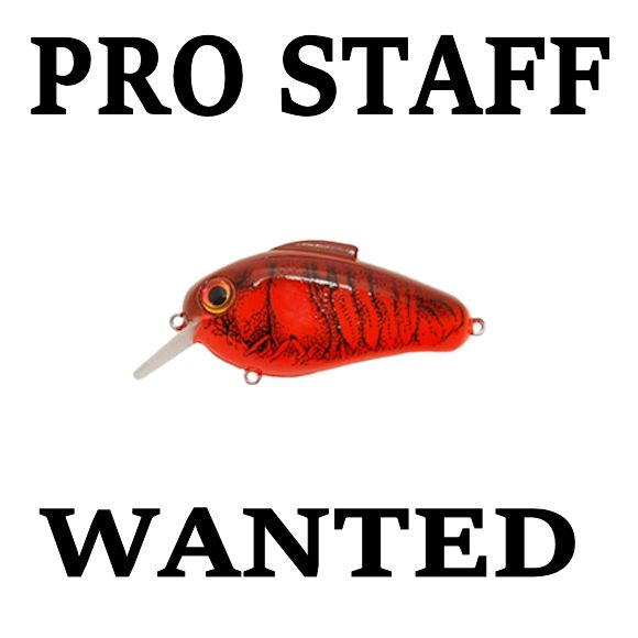 Melvin smitson fishing pro staff wanted at bill lewis lures for Fishing pro staff