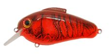 fishing-pro-staff-wanted-at-bill-lewis-lures.jpg