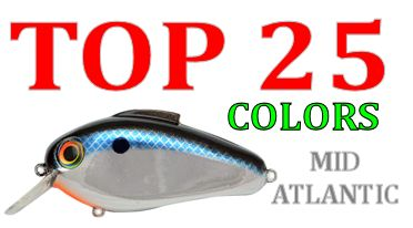 top-25-echo-colors-mid-atlantic-fishing.jpg