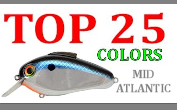 top-25-echo-colors-mid-atlantic-fishing-lures.jpg