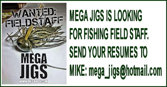 fishing-field-staff-wanted-at-mega-jigs-a.jpg